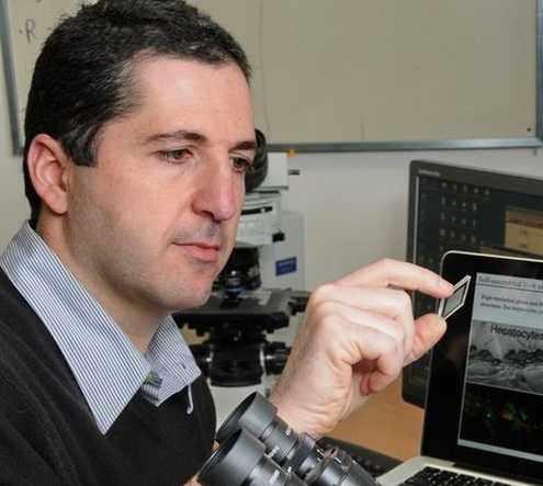 Impresionante Tecnología Israelí: El Hígado-Chip