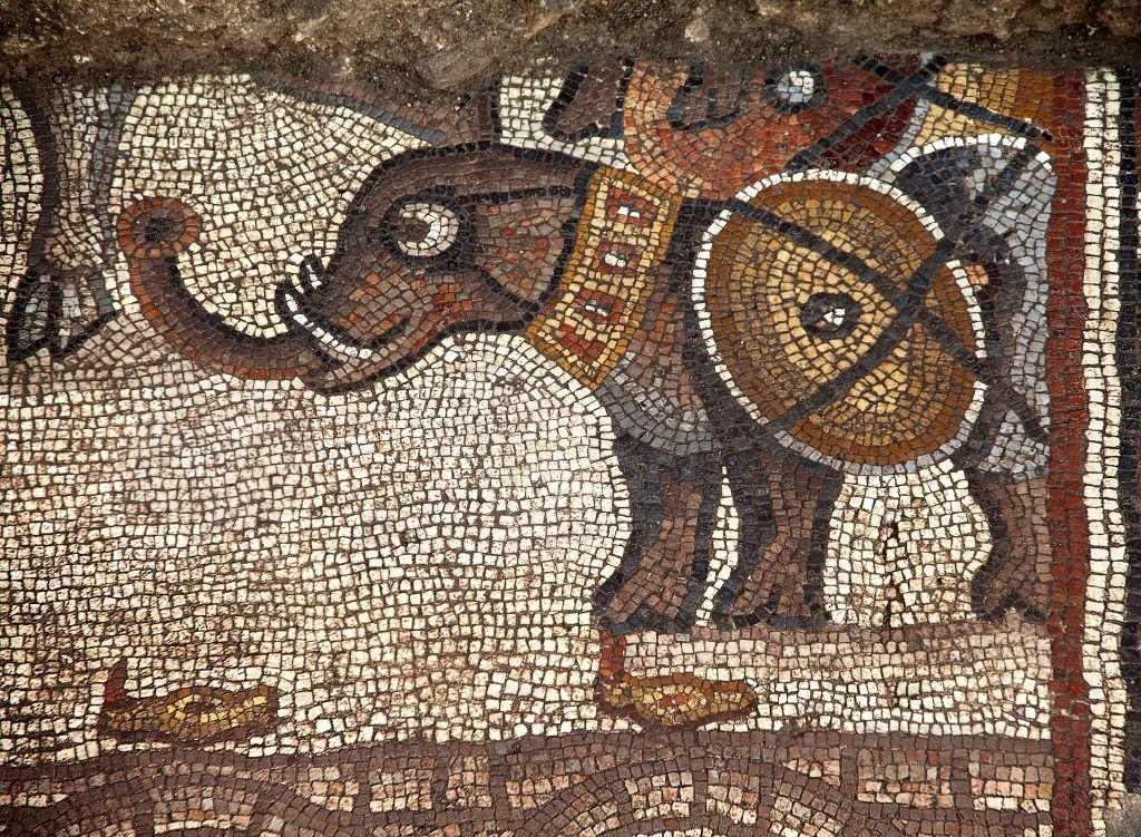 El mosaico del siglo V de la sinagoga Huqoq, con el registro superior mostrando un elefante de guerra.(Jim Haberman)