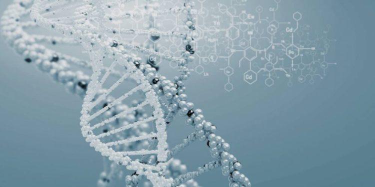 Científicos israelíes descubren una mutación genética que podría prolongar la vida por 10 años