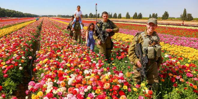 """Soldados israelíes van caminando entre los cultivos de flores en Nir Yitzhak, al sur de Israel, en el lugar que era un área de ensayo para tanques y soldados israelíes durante la """"Operación Margen Protector"""" del verano pasado. (Foto: Edi Israel / FLASH90)"""