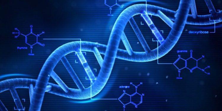 El genoma del judaísmo - judíos