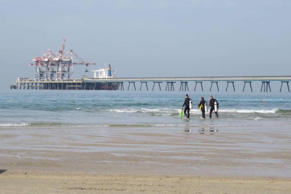 Buzos en la playa de Hadera, Israel. ¿Los tiburones vinieron aquí debido al calor del agua? (Foto: Moshe Gilad)
