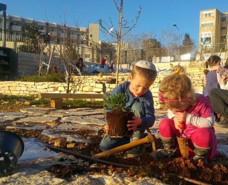 Plantando árboles en Tu Bishvat en Jerusalem Foto: Tehila Hertz Wikimedia CC BY-SA 4.0