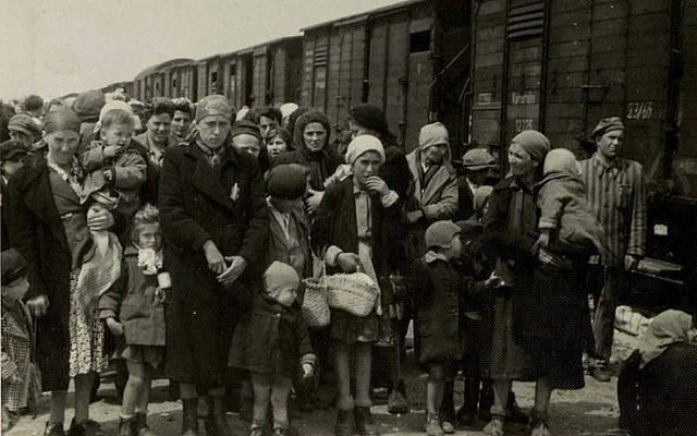 En Auschwitz-Birkenau, en mayo de 1944, los judíos húngaros llegaron a los vagones de ganado y se prepararon para la 'selección' dirigida por las SS (álbum de Auschwitz).