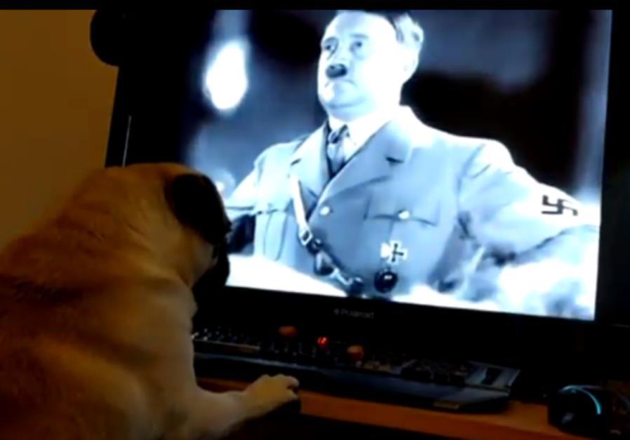Hombre que enseñó a perro saludo nazi declarado culpable de delito de odio