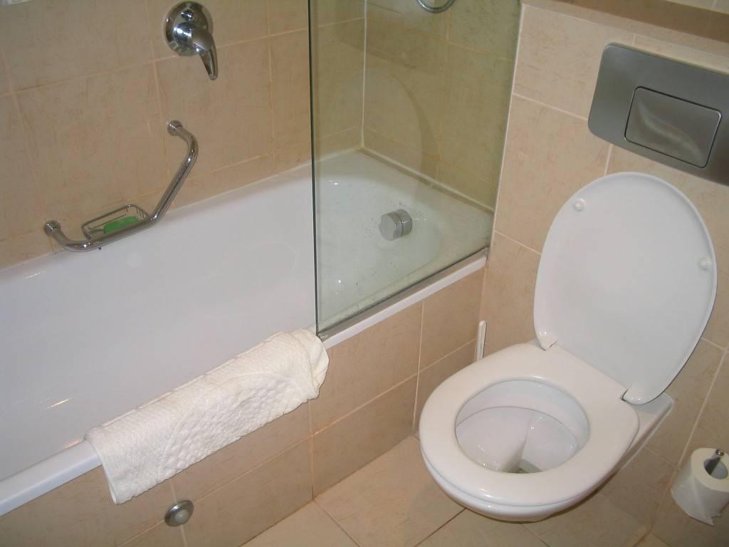 La limpieza de su baño puede que nunca sea igual gracias a una invención israelí (https://pixabay.com/es/hotel-toilet-israel-design-home-1134486/)
