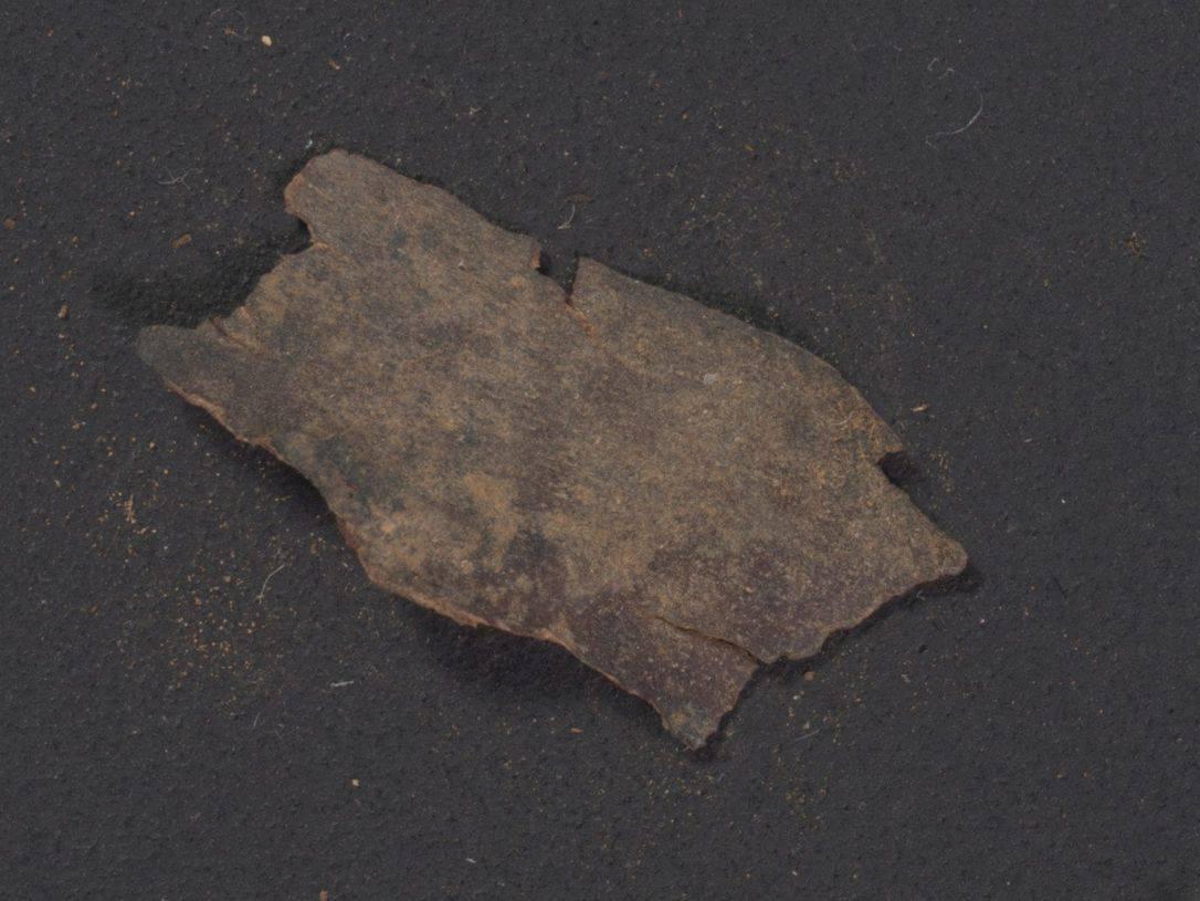 Un fragmento de Deuteronomio hallado en Qumran, visto a simple vista. Crédito: Shai Halevi, Biblioteca Digital de los Rollos del Mar Muerto de Leon Levy