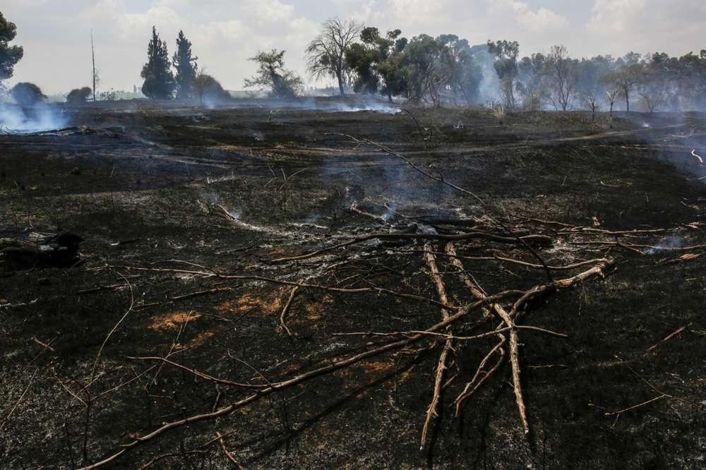 Tierra en el sur de Israel, cerca de la frontera de Gaza, quemada por cometas incendiarias enviadas desde Gaza.(Yehuda Peretz / KKL-JNF / cortesía)