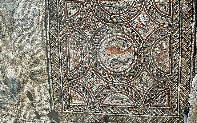 La sección recién expuesta del mosaico de Lod. (Niki Davidov, IAA)