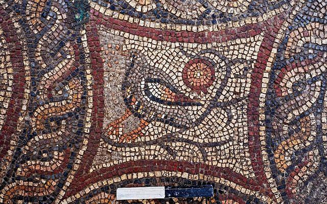 Figuras de animales en el mosaico Lod recientemente expuesto. (Asaf Peretz, AAI)