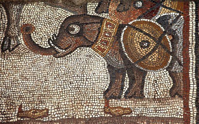 El mosaico del quinto siglo de la sinagoga Huqoq, con el registro superior que muestra un elefante de guerra. (Jim Haberman)
