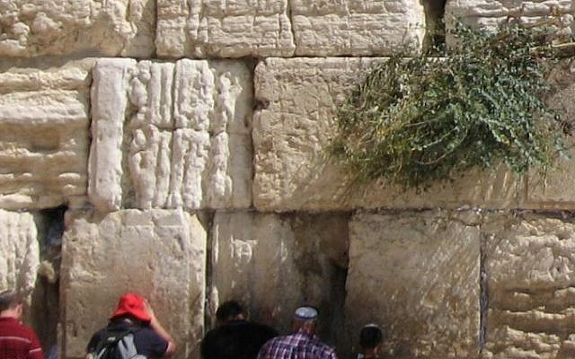 Parte del Muro Occidental muestra piedras altamente erosionadas junto con las bien conservadas. (Crédito de la foto: Dr. Simon Emmanuel / Hebrew University)