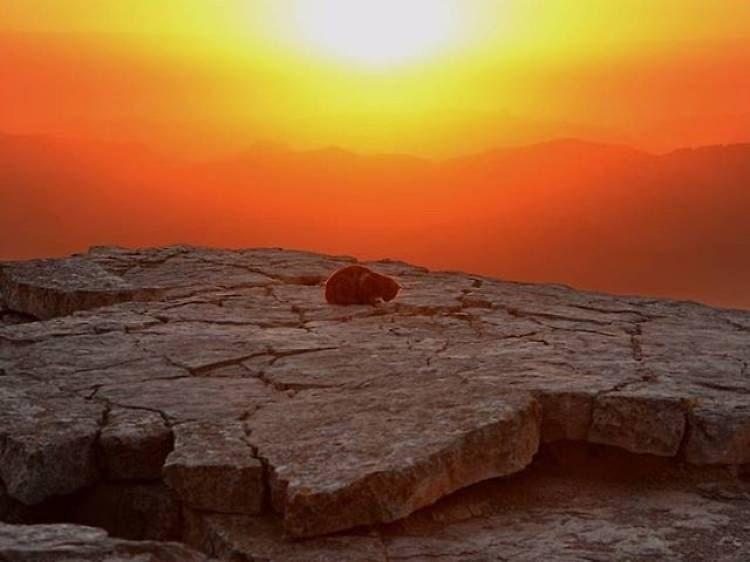 1-Desde el borde de un cráter: Mitzpe Ramon