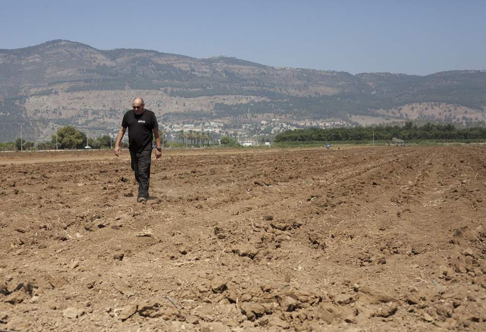 En esta foto del 17 de julio de 2018, el agricultor israelí Ofer Moskovitz camina por su campo cerca de Kfar Yuval, Israel.(AP Photo / Caron Creighton)