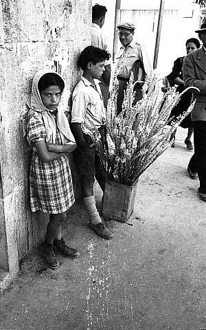 Una foto callejera tomada por Efraim Ilani. (Cortesía)