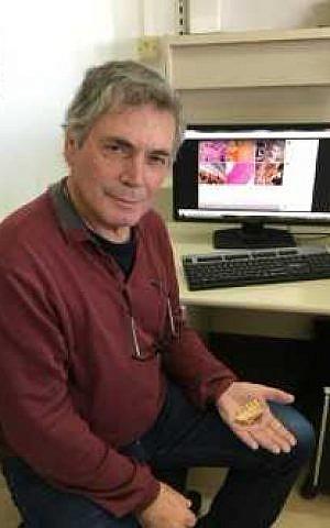 El profesor Israel Hershkovitz de la Universidad de Tel Aviv sostiene el Misilya 1 maxila de 177,000 a 194,000 años de antigüedad. (cortesía)