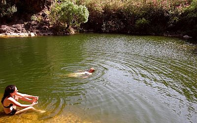 La gente nada en una de las dos piscinas de agua dulce bajo una gran cascada en un sendero llamado Upper Zavitan el 4 de julio de 2006, en Yehudia, un parque en los Altos del Golán. (Phil Sussman / Flash90 / Archivo)