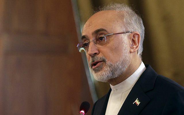 El jefe de la Organización de Energía Atómica de Irán, Ali Akbar Salehi, habla en una conferencia sobre cooperación internacional para mejorar la seguridad, protección y salvaguarda nuclear en la Academia Lincei, en Roma, el 10 de octubre de 2017. (AP / Gregorio Borgia)