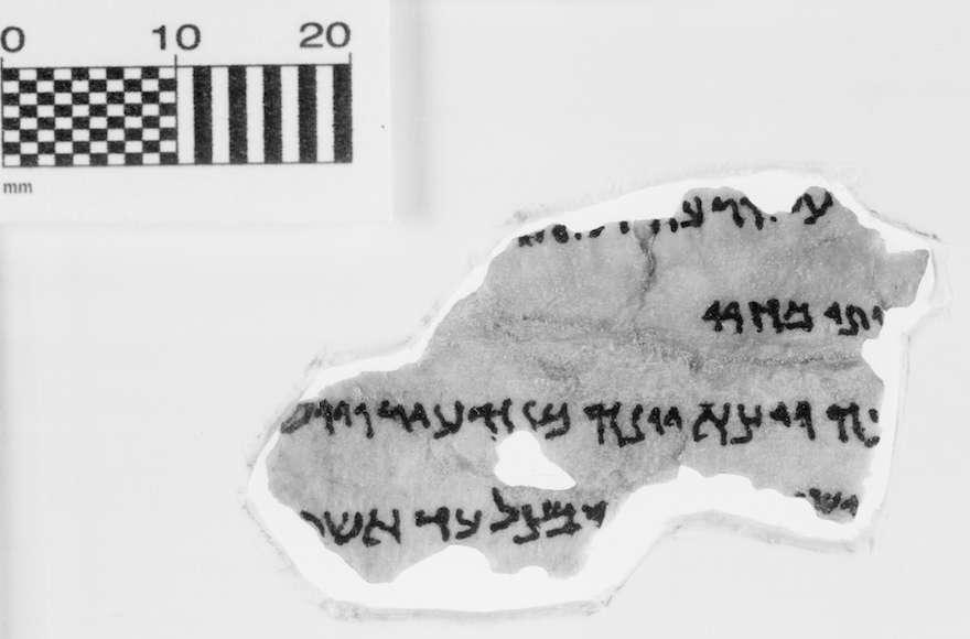 Un fragmento de la colección de los Rollos del Mar Muerto del Museo de la Biblia (Museo de la Biblia a través de JTA)