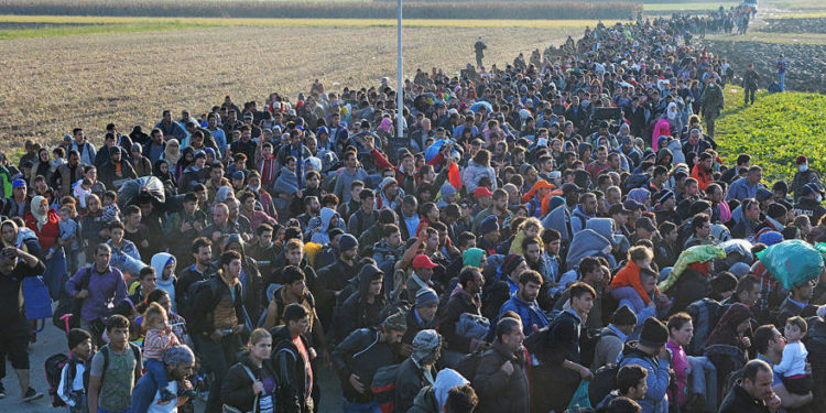 Estados miembros de la ONU: la migración es un derecho humano