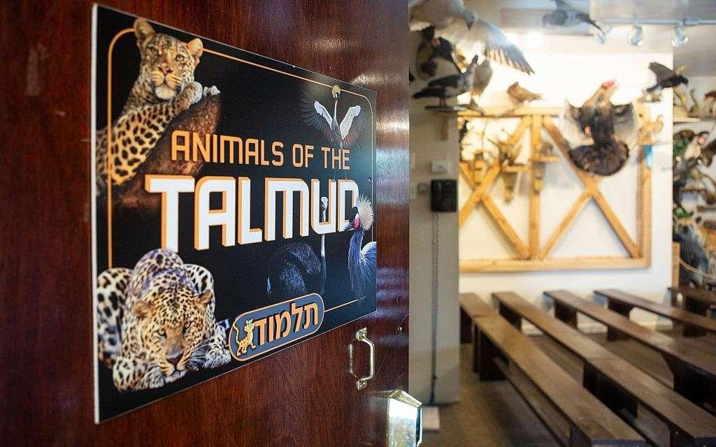 Un letrero que promociona 'Animales del Talmud' en el Museo de Animales Torah en la ciudad de Nueva York.(Miqueas B. Rubin / Times of Israel)