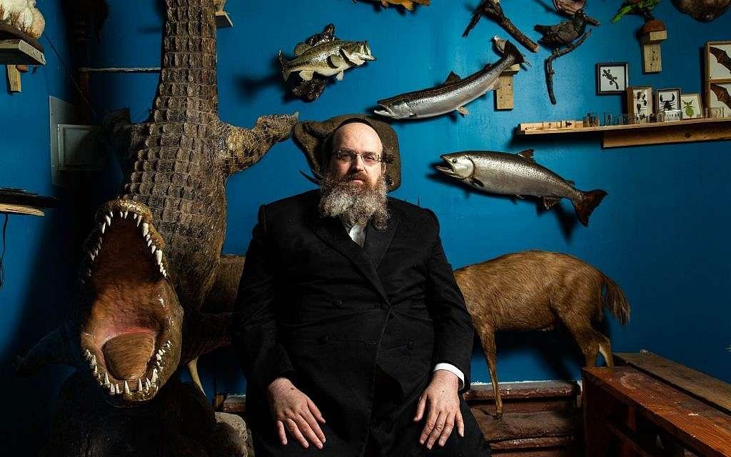 El Museo Bíblico que exhibe a los animales mencionados en la Torá y el Talmud