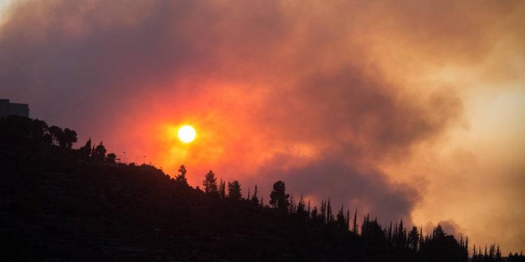 Gran incendio se desata en el Bosque de Jerusalem