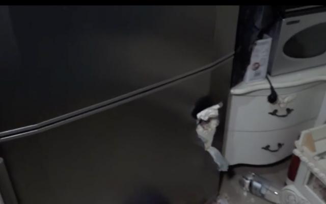El reportero de Hadashot TV Moshe Nussbaum muestra que una pieza de metralla de un cohete de Hamas entró por una nevera en una casa en Netivot, 12 de noviembre de 2018 (noticias de Hadashot TV)