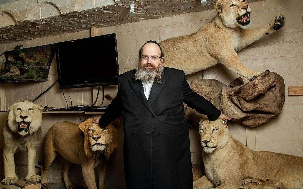 El rabino Shaul Shimon Deutsch, fundador de Torah Animal World, el museo de la ciudad de Nueva York que alberga las 1,100 especies mencionadas en la Biblia y el Talmud.(Miqueas B. Rubin / Times of Israel)