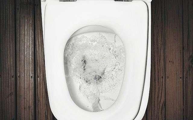 Una imagen ilustrativa de un inodoro con descarga (winnond; iStock by Getty Images)