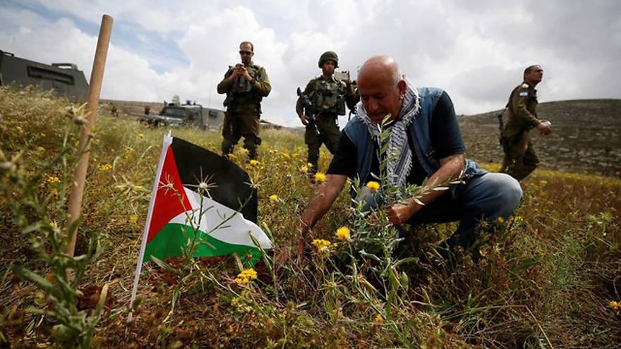Autoridad Palestina planta 15 millones de árboles para apoderarse de la tierra en Judea y Samaria