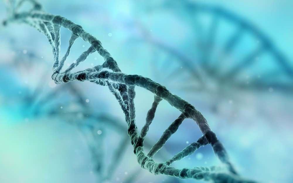 Cadena de ADN humano (iStock by Getty Images)