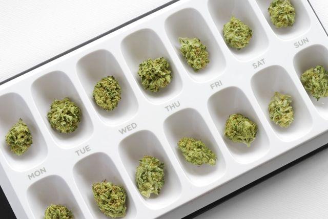 Marihuana medicinal (Foto: Shutterstock)