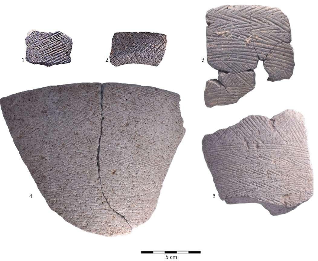 Un ejemplo inusual de cuenco de período calcolítico en el que toda la superficie está cubierta con triángulos.(Equipo de excavación de la Universidad de Haifa)