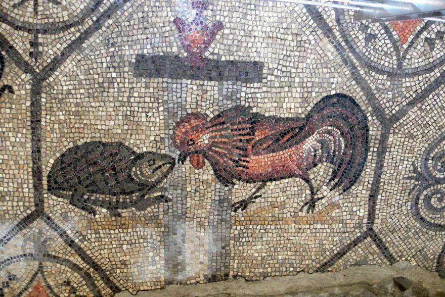 Gallo contra rana en la antigüedad - Wolfgang Sauber