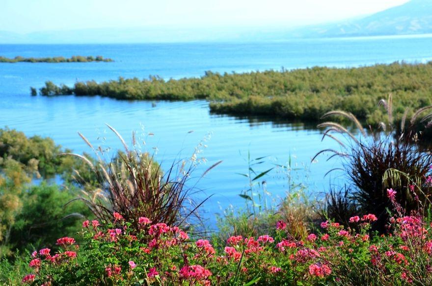 Ruta que conduce al mar de Galilea (Foto: Oficiales del Mar de Galilea)