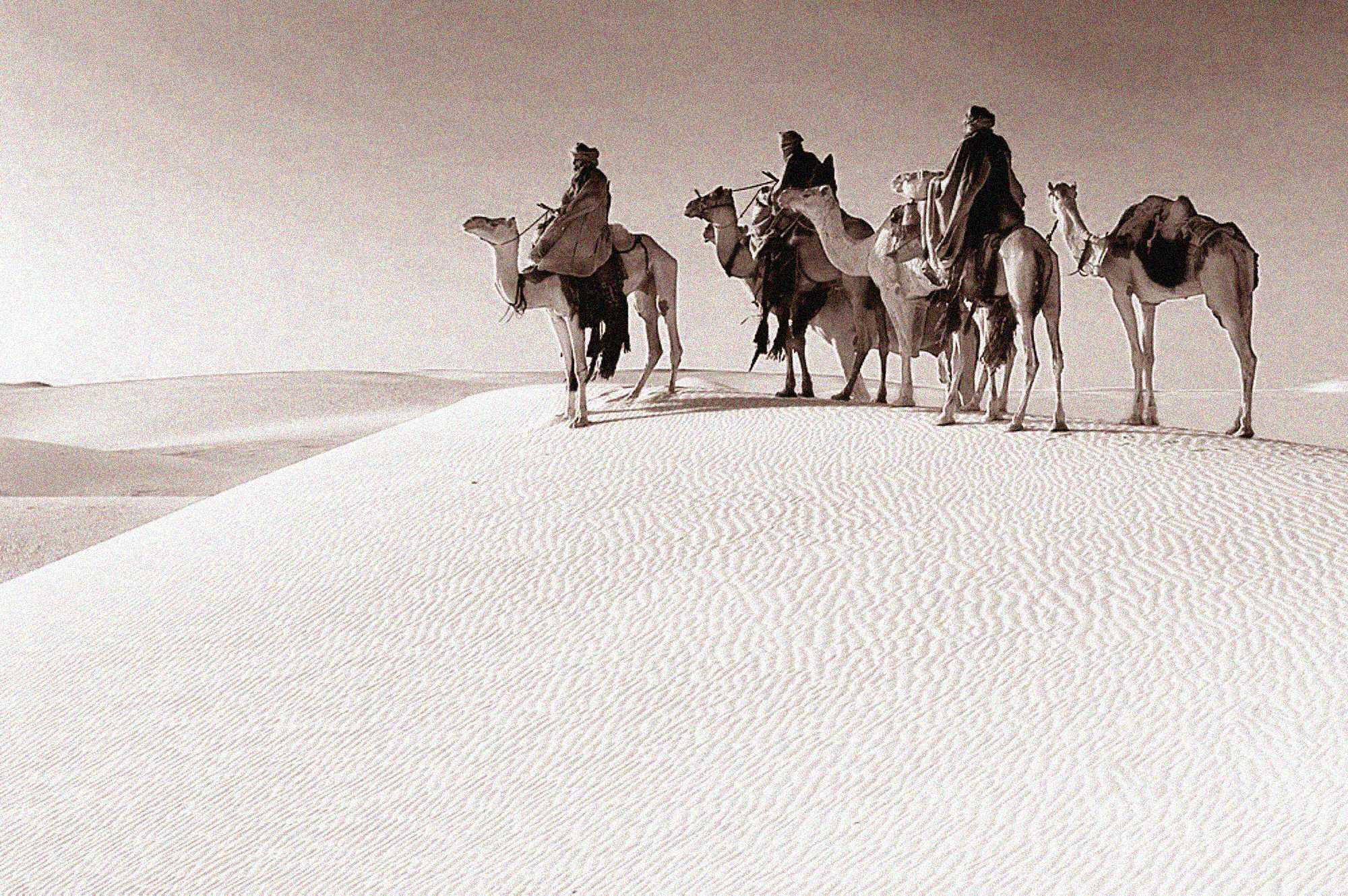 Los orígenes de los colonos árabes en la tierra de Israel