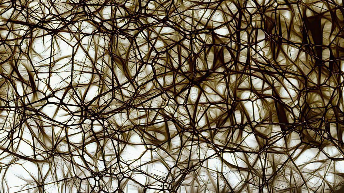 El Alzheimer mata directamente las células cerebrales que te mantienen despierto