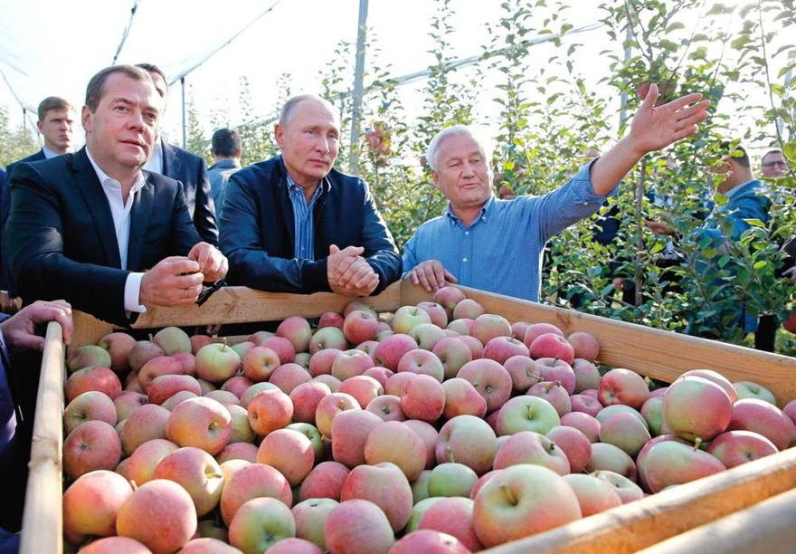 El primer ministro ruso, Dmitry Medvedev, a la izquierda, con el presidente Vladimir Putin en una granja en el suroeste de Rusia. DMITRY ASTAKHOV / AFP