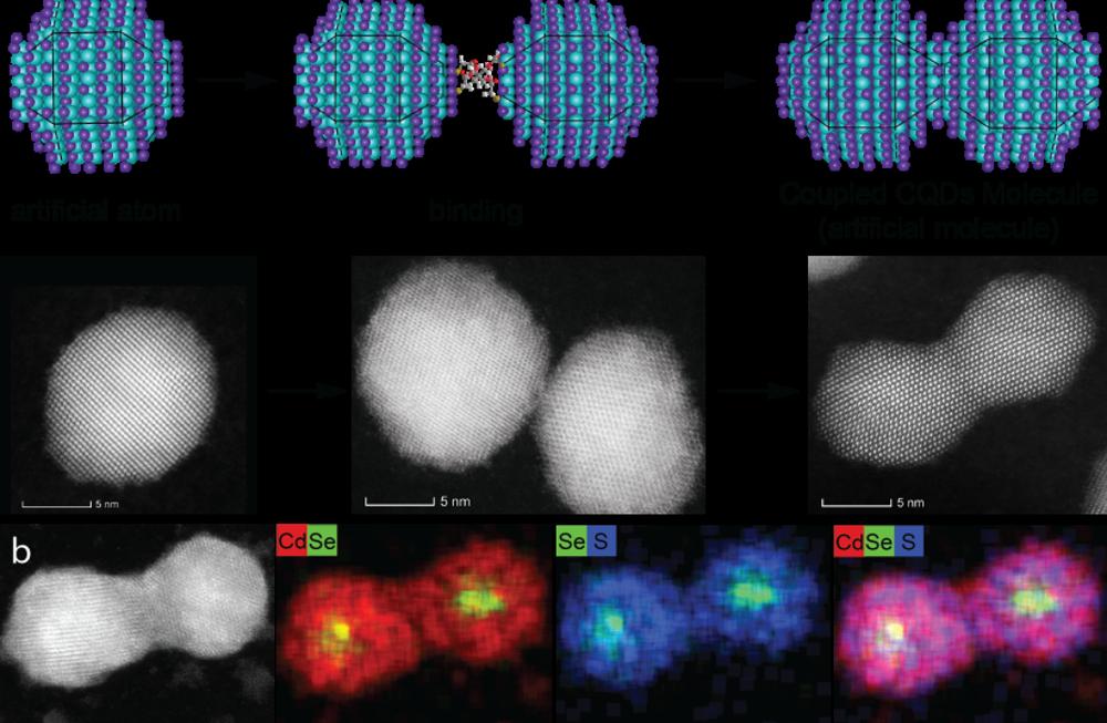 Átomos y moléculas de puntos cuánticos (Crédito de la foto: MEIRAV ODED Y SOMNATH KOLEY)