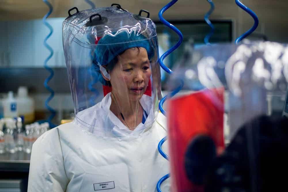 Experta en murciélagos de China dice que su laboratorio de Wuhan no fue la fuente del nuevo Coronavirus