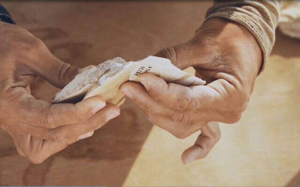 Des témoignages d'humains qui ont quitté l'Afrique il y a 100000 ans ont été trouvés en Israël