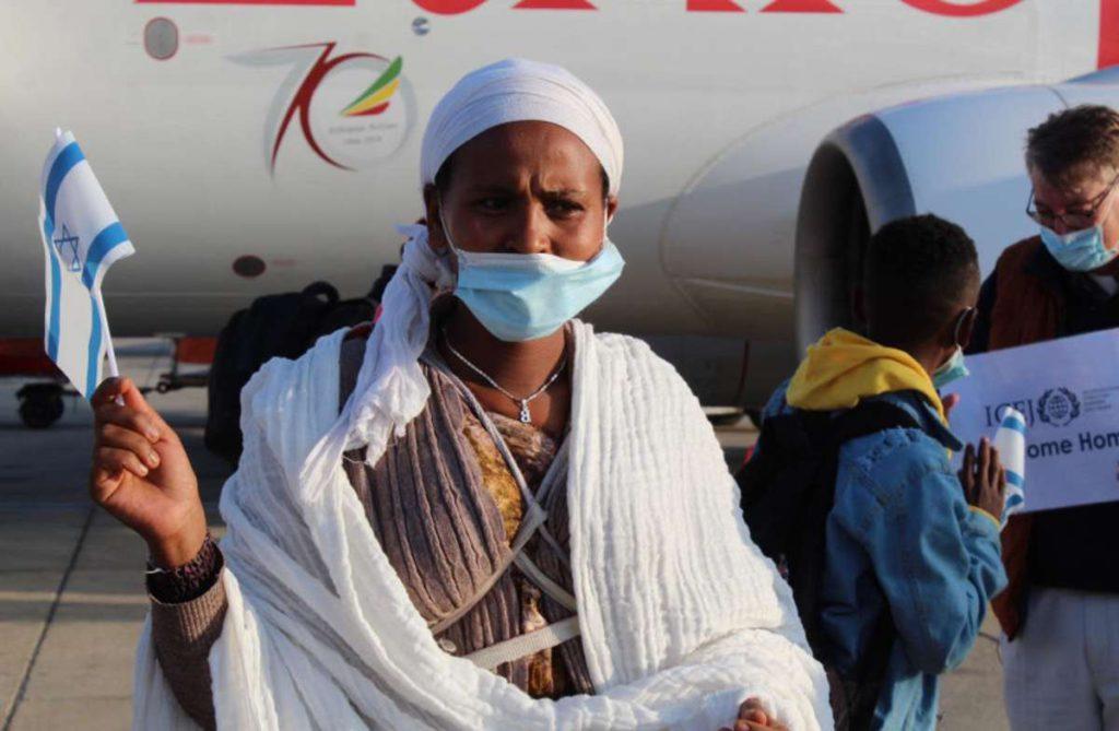 Judia etiope