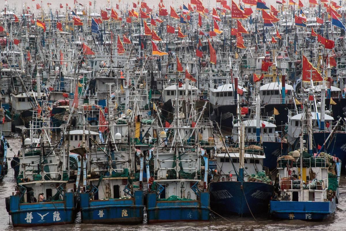 Flota pesquera de China está aspirando los océanos del mundo