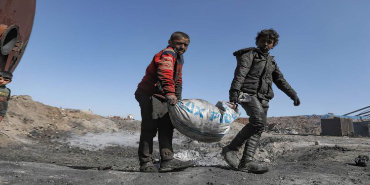 Autoridades kurdas de Siria emiten tarjetas de trabajo para niños