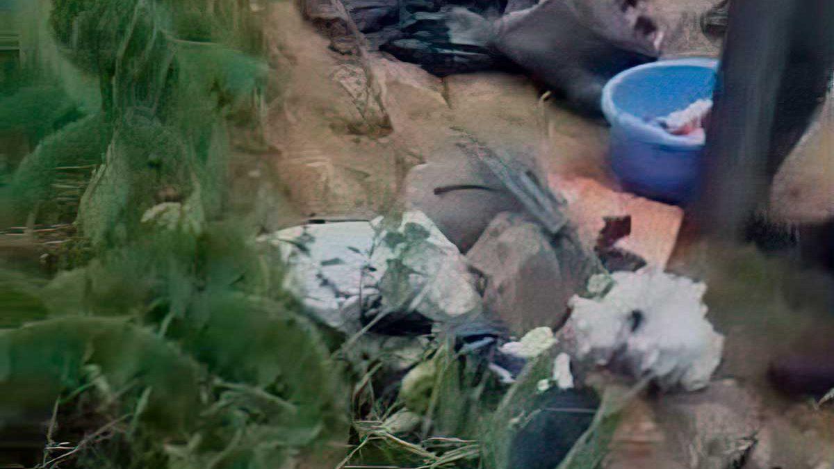Vándalos dejan cráneos de cerdo en la tumba de la hija de Rabi Najman de Breslov