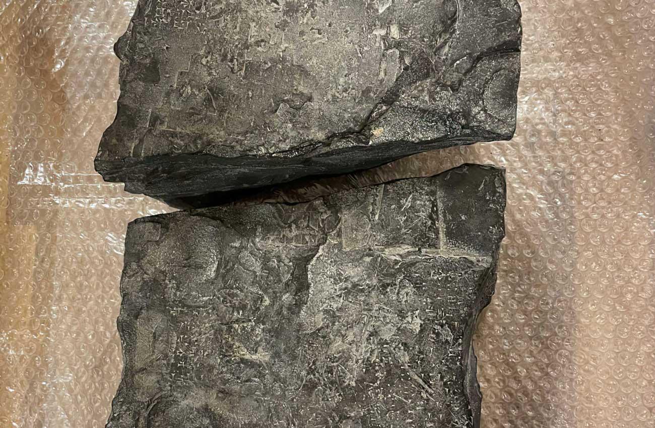 Noruega: Hallan artefactos de la antigua Mesopotamia desaparecidos en Irak