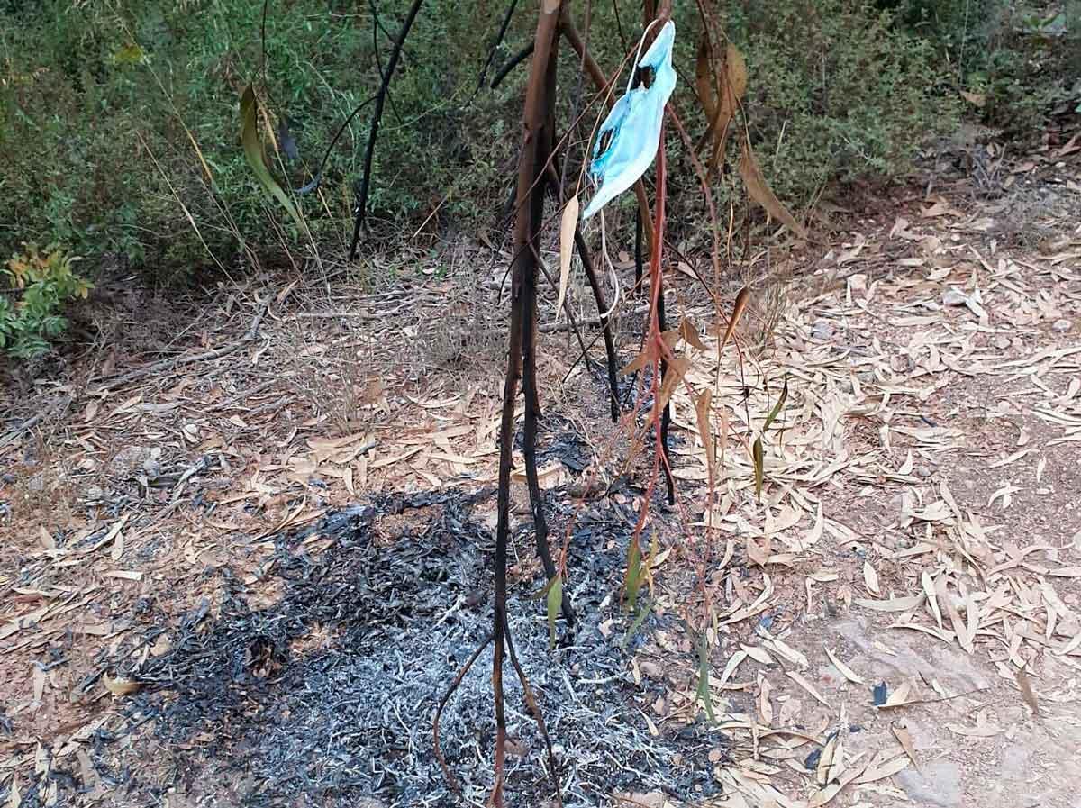 Incendio forestal cerca de Jerusalén continúa ardiendo fuera de control
